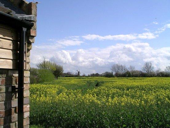Sunflower Cottage Rural views